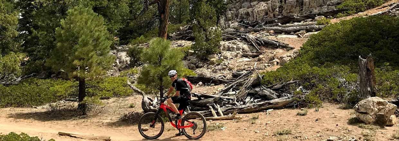RIDE-run-the-canyons-mountainbike-rejser-cayons-mountainbike-morten.w1240.h440.backdrop.jpg