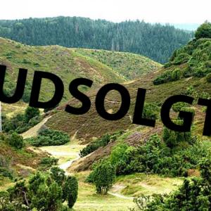 TrailløbeCamp – Rold Skov<br>12. december – 13. december 2020