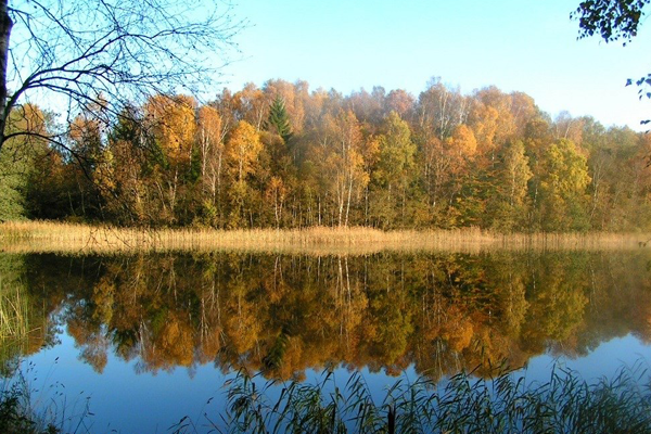 Rold-Vesterskov06